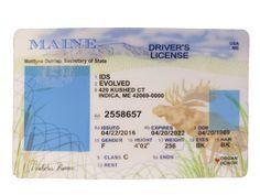 Ca Drivers License, Drivers License California, Drivers License Pictures, Driver License Online, Driver's License, Money Template, Id Card Template, Card Templates, Bill Template