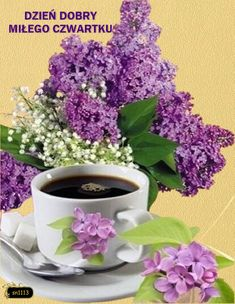 Coffee Time, Good Morning, Herbs, Tableware, Plants, Disney, Quotes, Frases, Fotografia
