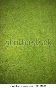 Google Image Result for http://image.shutterstock.com/display_pic_with_logo/202762/202762,1251589328,1/stock-photo-aeral-of-soccer-football-grass-field-natural-background-36131305.jpg