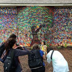 Paparazzi bombarding this little celebrity at the Kemp House I painted in the Bishop Arts District of Dallas #art #painting #streetart #urbanart #ManciniArt #aerosol #graffiti #Dallas #Dallasart #DallasArtsDistrict #sprayart #modernart #DFW #dfwart #dfwartist #artwork #artist #ArtsDistrict #instadfw #deepellum #artbasel #abstract #abstractart #abstractstreet #denton #dentontx #dentonart #bishoparts by mancinism