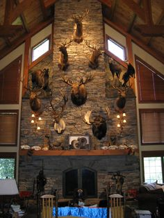 Hunting room, Trophy rooms, Hunting man cave, Home bar. Taxidermy Decor, Taxidermy Display, Hunting Lodge Decor, Hunting Lodge Interiors, Hunting Rooms, Trophy Hunting, Archery Hunting, Bow Hunting, Home Bar Accessories