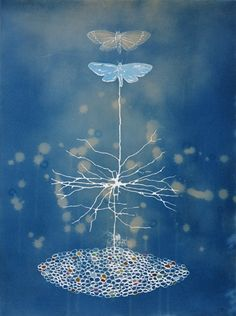 """Emerge, cyanotype and gouache on paper, 20""""x15"""" (join things up - collage)"""