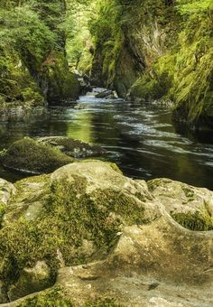 The Fairy Glen of North Wales