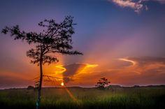 Sunrise: Everglades National Park - A beautiful sunrise in Everglades National Park. Photography by  Curt Rosner