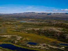 Høyt og fritt med den beste utsikten en kunne tenke seg - Flott høyfjellstomt - Vei, vann og avløp | FINN.no Mountains, Nature, Travel, Naturaleza, Viajes, Traveling, Natural, Tourism, Scenery