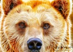 A re-edited photo featuring a Brown Bear, incorporating a combined HDR and Fractalius effect. Created in Photoshop using various filters and photo stock. Brown Bear: Fractalius Re-Edit Fractal Art, Fractals, Photography 2017, Brown Bear, Lions, Photoshop, Deviantart, Stock Photos, Abstract Designs