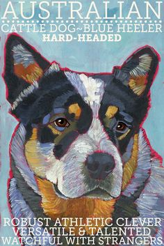Australian Cattle Dog No. 1 - magnets, coasters and art prints in four sizes blue heeler on Etsy, $6.00