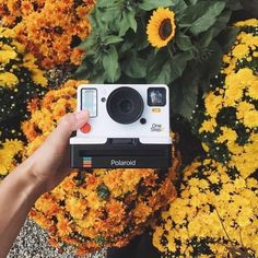 Best Instant Film Cameras To Capture All Your Summer Memories - - Yellow Aesthetic Photo, Aesthetic Pictures, Beste Comics, Laura Bailey, Robert Englund, Dslr Photography Tips, Yellow Photography, Photography Equipment, Portrait Photography