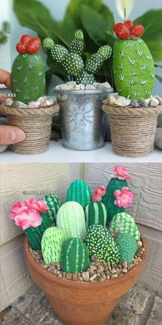 How cute are these cactus painted rocks?, How cute are these cactus painted rocks? Cactus Rock, Stone Cactus, Painted Rock Cactus, Painted Rocks, Cactus Cactus, Indoor Cactus, Diy Crafts To Do, Rock Crafts, Crafts For Kids