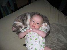 bébé et chat trop mignons 20