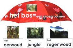 Meester Eeuwout - groep 3 :: meestereeuwoutgroep3.yurls.net Grade 1, Net, Teaching, Parachutes, School, Kids, Dutch, Africa, Young Children