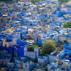 jodhpur-india. OK, so the pink lake reminded me of the blue city, which I DID already know about.