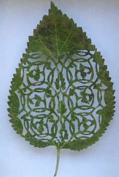 amazing cut away leaf art. Its not paper but just as cool