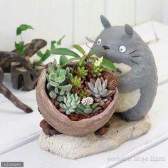 #pot #planter #maceta