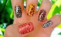 Here is Animal Print Nail Designs Pictures for you. Animal Print Nail Designs mix and match animal print nails animal theme. Nail Art 2014, Nails 2014, New Nail Art, Zebra Nails, Leopard Print Nails, Bling Nails, Cheetah Print, Bling Bling, Safari Party