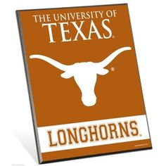 Rico Industries NCAA Texas Longhorns 4-Inch by 9-Inch Classic Mini Pennant D/écor