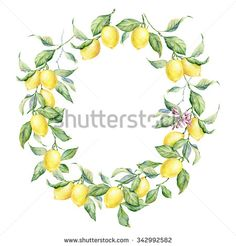 Hand drawn round frame of watercolor lemon. Watercolor illustration wreath of lemon and leaves. Can be used as a greeting card for background, birthday, mother's day and so on. - stock photo