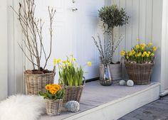 Hygge, Inspiration, Plant, Easter Activities, Lawn And Garden, Dekoration, Biblical Inspiration, Inspirational, Inhalation