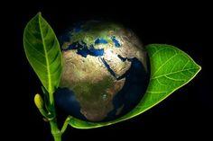 3 największe skandal CSR roku 2015