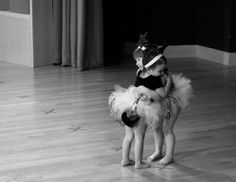 Best Play Dance friends forever