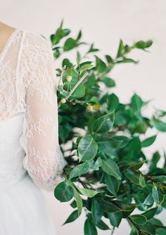 Camellia Branches As A Bouquet Rebecca Schoenvelde Lace Top Photo By Jen Huang Wedding Dress Green Wedding, Floral Wedding, Wedding Colors, Wedding Flowers, Floral Bouquets, Wedding Bouquets, Wedding Dresses, Floral Headpiece, Camellia