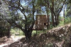 Check out this awesome listing on Airbnb: Wild Woods Tree Fort - Treehouses for Rent in San Rafael