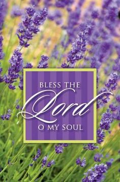 PSALM  103:1 -  Bless the Lord, O my soul, and all that is in within me,  bless his holy name!