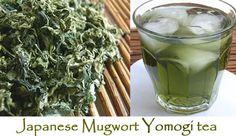 Mugwort Japanese Yomogi Herbal Tea Artemisia by GreenTeaWeightLoss