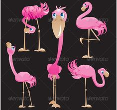Flamingos Cartoons  #GraphicRiver         Set of Flamingos cartoons. This image is a vector illustration and can be scaled to any size without loss of resolution. All parts of the image are editable.     Created: 11April13 GraphicsFilesIncluded: VectorEPS Layered: No MinimumAdobeCSVersion: CS Tags: africa #african #animal #asian #beach #beautiful #bird #cartoon #concept #creatures #cute #exotic #feathers #flamingo #florida #funny #lovely #natural #nature #pink #plumage #postcard #red…