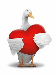 Valentine's Aflac duck