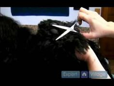 Long Haired Dog Grooming Instructions : Foot Pad Dog Grooming Tips