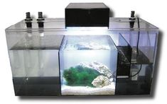 Of course, all great aquariums need a sump . . .