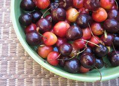 Celadon Green Bowl of Cherries