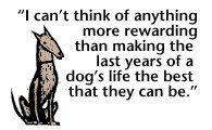 Senior dogs are SO appreciative of a warm, loving home and companionship.