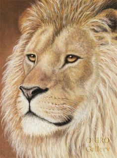 """The Lion"" - pastel pencils painting. The lion figure reminds you to go through your life with confidence. Have faith, have courage. Remember your own strength, remember your power."