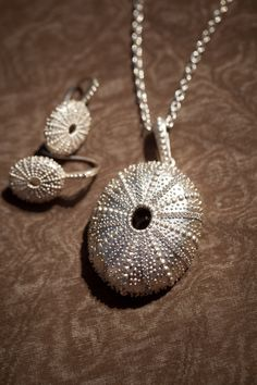 Our new gems. Although actually they are sea urchins. @India Hicks