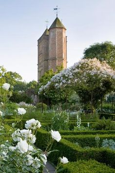 Sissinghurst Castle & Grounds | Sarah Raven. the famous white garden. As beautiful as all the guide books say it is.