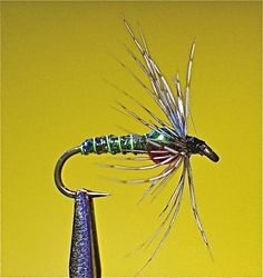 Soft Hackles…Still W