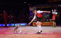 Johnny Fischer performs during the 'Wunderwelt der Manege' Circus Krone Premiere on February 1, 2015 in Munich, Germany.