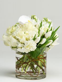 White Rose and Hydrangea Arrangement Contemporary Flower Arrangements, White Flower Arrangements, Fresh Flowers, White Flowers, Beautiful Flowers, Architecture 3d, Flower Boutique, Same Day Flower Delivery, Flower Boxes