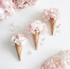 Inspiration image using ice-cream cones and petals to create the appearance of delicate floral ice-creams. Pretty In Pink, Beautiful Flowers, Coffee Filter Flowers, Coffee Flower, Coffee Filters, Deco Champetre, Deco Nature, Flat Lay Photography, Photography Gifts
