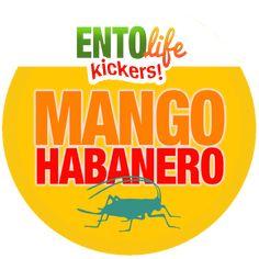Mini-Kickers are mango habanero flavored crickets