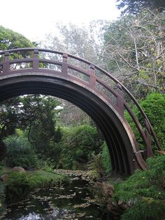 Exaggerated Japanese bridge is exaggerated. But somehow I don't mind.