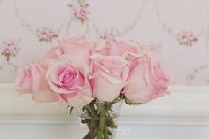 pale pink roses ❤