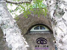 Sé que es un tablero de #ojos vivos pero cuando te encuentras con una #casa con ojos... vale la pena #pinearla