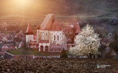 Transylvania World is the non-profit association, which is developing and managing worldwide the Transylvania, Dracula and other related brands. World, Spring, Photography, Painting, Colors, Art, Art Background, Photograph, Fotografie