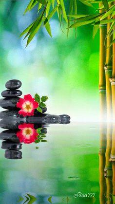 zen garden yoga nude chakra at DuckDuckGo Zen Wallpaper, Wallpaper Backgrounds, Orchid Wallpaper, Beautiful Gif, Beautiful World, Zen Pictures, Nature Gif, Zen Meditation, Water Reflections
