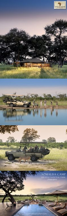 Our very own Liesl, owner of African Safari Consultants, was invited - along with her family - to stay at Somalisa Camp in Zimbabwe. Location: Hwange National Park, Zimbabwe | African Bush Camps
