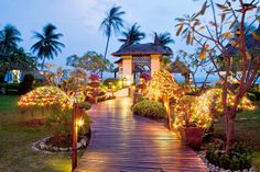 christmas in the Thailand - Google Search