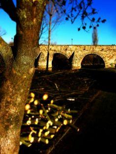 Rincones de Salamanca...